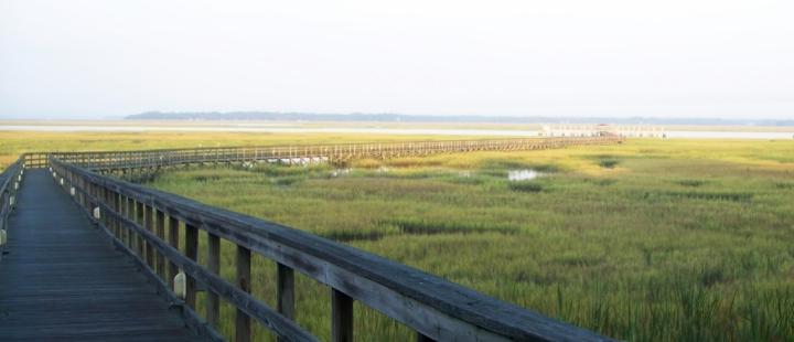 Amelia Island, Inland Coastal Waterway 2015