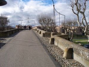 Pont Vieux, the 14th century foot bridge to town