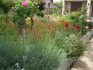 A courtyard garden for inspiration, down the street