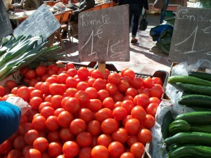 Just-picked tomatoes