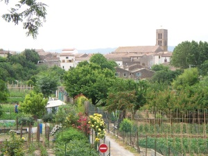 Trebes from the Canal-du-Midi