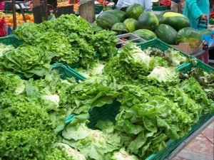Fresh lettuce at the market