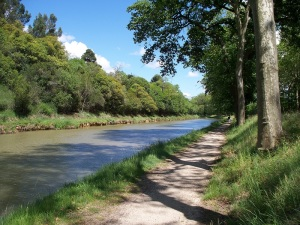 Walking beside the Canal-du-Midi