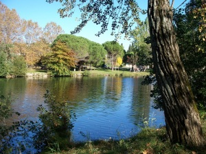 A riverside park and a fishing spot for Bill